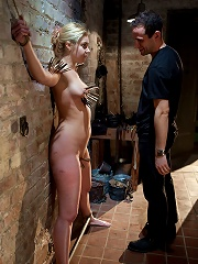 The Training of Holly Stevens...