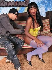 Brown ladyboy Pamela ready for wild anal dildo fun