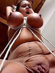 free boobs gallery Wild girls big tits roped
