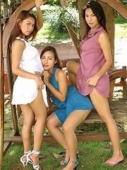Asian Sex Orgy
